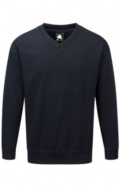 Buzzard V Neck Sweatshirt