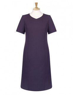 V Neck Shift Dress